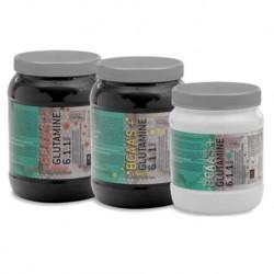 BCAA Glutamina 6-1-1